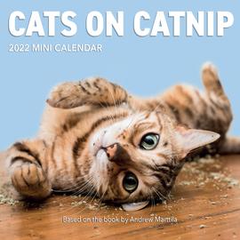 Cats on Catnip Mini Wall Calendar 2022 - cover