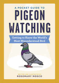 A Pocket Guide to Pigeon Watching - cover