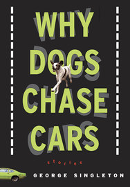 Why Dogs Chase Cars - cover