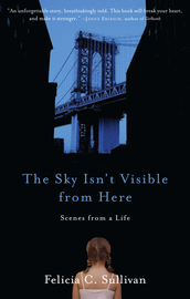 The Sky Isn't Visible from Here - cover