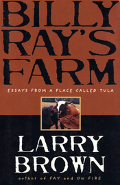 Billy Ray's Farm - cover