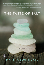 The Taste of Salt - cover