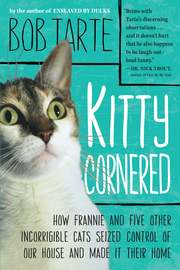 Kitty Cornered - cover