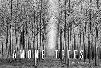 Among Trees - cover