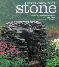 In the Company of Stone - cover