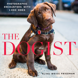 The Dogist - cover