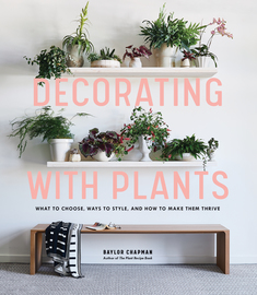 Decorating with Plants - cover
