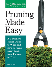 Pruning Made Easy - cover