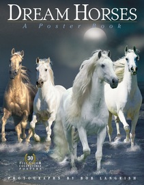 Dream Horses: A Poster Book - cover