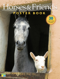 Horses & Friends Poster Book - cover