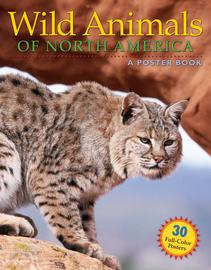 Wild Animals of North America - cover