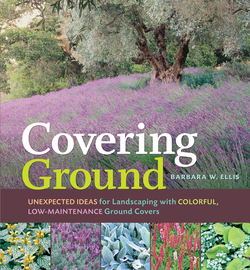 Covering Ground - cover