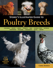 Storey's Illustrated Guide to Poultry Breeds - cover