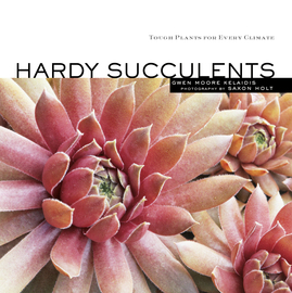 Hardy Succulents - cover