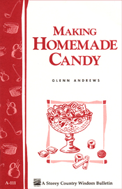 Making Homemade Candy - cover
