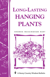 Long-Lasting Hanging Plants - cover
