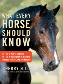 What Every Horse Should Know - cover