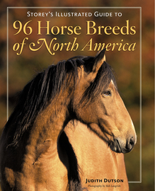 Storey's Illustrated Guide to 96 Horse Breeds of North America - cover