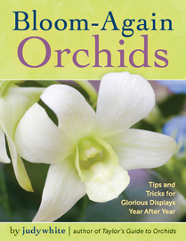 Bloom-Again Orchids - cover