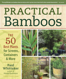Practical Bamboos - cover