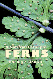 A Natural History of Ferns - cover