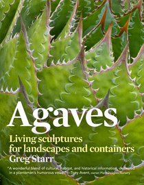 Agaves - cover
