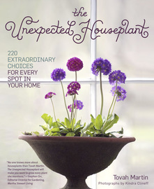 The Unexpected Houseplant - cover