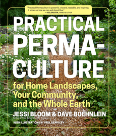 Practical Permaculture - cover