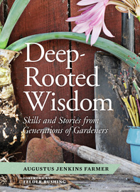 Deep-Rooted Wisdom - cover