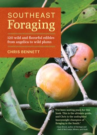 Southeast Foraging - cover