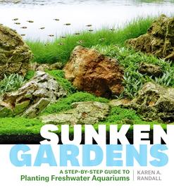Sunken Gardens - cover