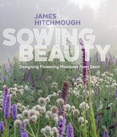 Sowing Beauty - cover