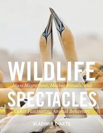 Wildlife Spectacles - cover