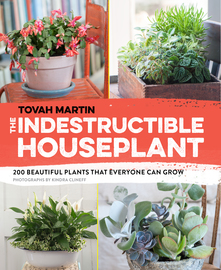 The Indestructible Houseplant - cover