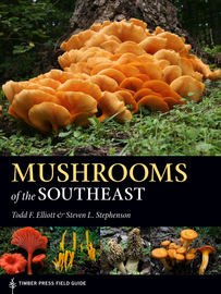 Mushrooms of the Southeast - cover