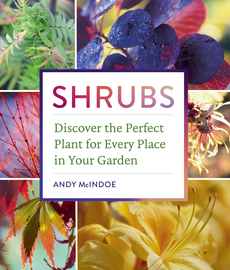 Shrubs - cover