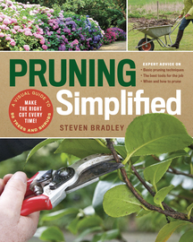 Pruning Simplified - cover