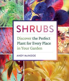 Shrubs - cover