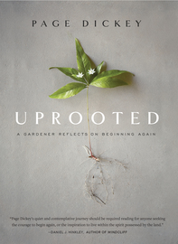 Uprooted - cover