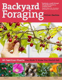 Backyard Foraging - cover