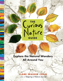 The Curious Nature Guide - cover
