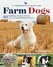 Farm Dogs - cover