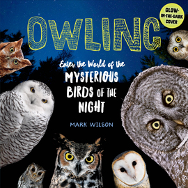 Owling - cover
