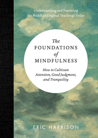 The Foundations of Mindfulness - cover