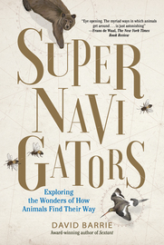 Supernavigators - cover
