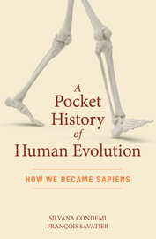 A Pocket History of Human Evolution - cover