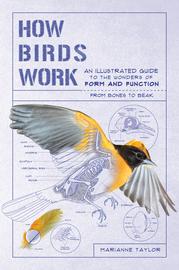 How Birds Work - cover