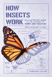 How Insects Work - cover