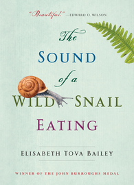 The Sound of a Wild Snail Eating - cover