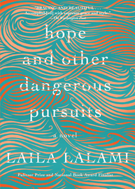 Hope and Other Dangerous Pursuits - cover